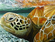 Green Sea Turtle Painting Metal Prints - Turtle Me Too Metal Print by Jon Ferrentino