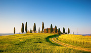 Tuscan Sunset Prints - Tuscan Countryside Print by Francesco Riccardo  Iacomino
