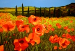 Reds Orange And Blue Prints - Tuscan Poppies Print by JoeRay Kelley