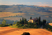 Italian Cypress Photo Acrylic Prints - Tuscan Villa Acrylic Print by Inge Johnsson