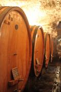 Wine Cellar Photos - Tuscan Wine Cellar by Nadine Rippelmeyer