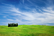 Tuscan Hills Photos - Tuscany Cypress by Brian Jannsen