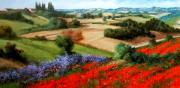 Italy Town Large Paintings - Tuscany hills by Daniele Raisi