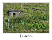 Cultivation Digital Art Prints - Tuscany Italy Print by Brandon Bourdages
