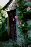 Country Cottage Photo Originals - Tuscany Villa Door by Sharon Blanchard