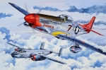 P-51 Framed Prints - Tuskegee Airman Framed Print by Charles Taylor