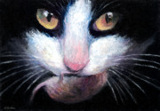 Oil Drawings - Tuxedo cat with mouse by Svetlana Novikova
