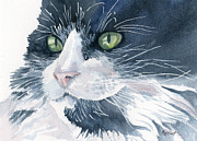 Cats Originals - Tuxedo by Marsha Elliott