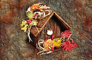 Red Roof Photos - Tweet Little Bird House by Andee Photography