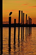 Lynda Dawson-youngclaus Photographer Prints - Twelve Poles at Sunset Print by Lynda Dawson-Youngclaus