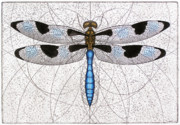 Flying Mixed Media Posters - Twelve Spotted Skimmer Poster by Charles Harden