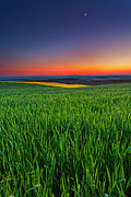Twilight Photo Framed Prints - Twilight Fields Framed Print by Evgeni Dinev
