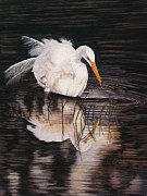 Snowy Egret Originals - Twilight Interlude by Jacquie  Vaux