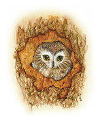 Owl Greeting Card Prints - Twilight Owl Print by Donna Genovese