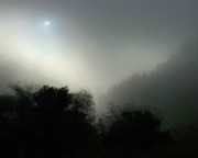 Foggy Art - Twilight Valley of the Moon California by Gus McCrea