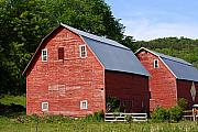 Red Barns Metal Prints - Twin Barns Metal Print by Larry Ricker