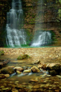 Spring Landscape Art - Twin Falls by Iris Greenwell