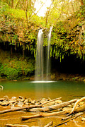Twin Falls Maui Hawaii Print by Christopher  Ward