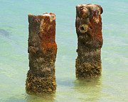Reddish Flaking Iron Oxide Posters - Twin Rusted Dock Piers of the Caribbean II Poster by David Letts