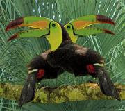 Toucan Digital Art Posters - Twin Toucans Poster by Larry Linton
