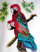 Rain Forest Macaws Prints - Twins Print by Karin Best