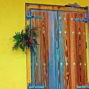 Door Hinges Posters - Twisted Root Poster by Debbi Granruth