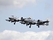 Mid-air Prints - Two A-10c Thunderbolt Aircraft Print by Timm Ziegenthaler