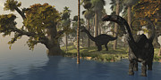 Tree Creature Digital Art Framed Prints - Two Apatosaurus Dinosaurs Visit An Framed Print by Corey Ford