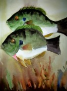 Fish Underwater Paintings - Two Bluegills by Audrey Bunchkowski