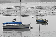 Grey Posters - Two Boats at Low Tide Poster by Pam Blackstone
