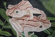 Lilly Pond Paintings - Two Brown Striped Frogs by Terry Lewey