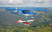 Three Speed Prints - Two Champion Aircraft Citabrias Print by Scott Germain