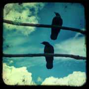 Corvus Brachyrhynchos Prints - Two Crows blue lomo sky Print by Gothicolors And Crows