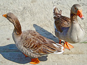 Ducks Paintings - Two Ducks by Gregory Dyer