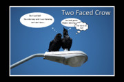 Comedy Art - Two Faced Crow by Lisa Knechtel
