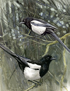Magpies Paintings - Two for Joy by Chris Pendleton