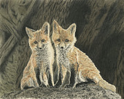 Fox Mixed Media - Two Fox Cubs by Chris Trudeau