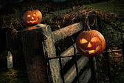 Jack-o-lantern Posters - Two halloween pumpkins sitting on fence Poster by Sandra Cunningham