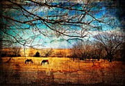 Grazing Horse Digital Art Posters - Two Horses Grazing Under a Bright Blue Sky Poster by Sharlotte Hughes