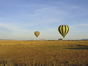 Travel - Tanzania - Two Hot Air Balloons Float Over Serengeti by Darcy Michaelchuk