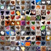Grid Of Heart Photos Digital Art - Two Hundred Series by Boy Sees Hearts