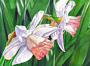 Daffodil Painting Prints - Two Jonquils Print by Catherine G McElroy