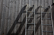 Cabin Wall Metal Prints - Two Ladders Leaning Against A Wooden Wall Metal Print by Meera Lee Sethi