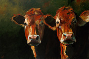 Limousin Posters - Two Limousins Poster by Cari Humphry