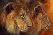 African Lion Art Framed Prints - Two Lions Framed Print by Carol Cavalaris