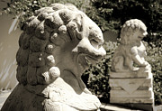 Chinese Sculptures - Two Lions by Yurix Sardinelly