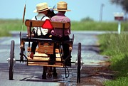Amish Farms Photo Prints - Two Little Amish Boys in a Buggy Print by Randy Matthews