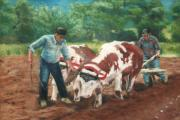 Farming Pastels Framed Prints - Two Men And Oxen Framed Print by Lisa Pope