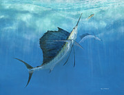 Salt Water Game Fish Posters - Two Of A Kind Sailfish Poster by Kevin Brant