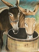 Animals Pastels Originals - Two of a Kind by Scott Easom